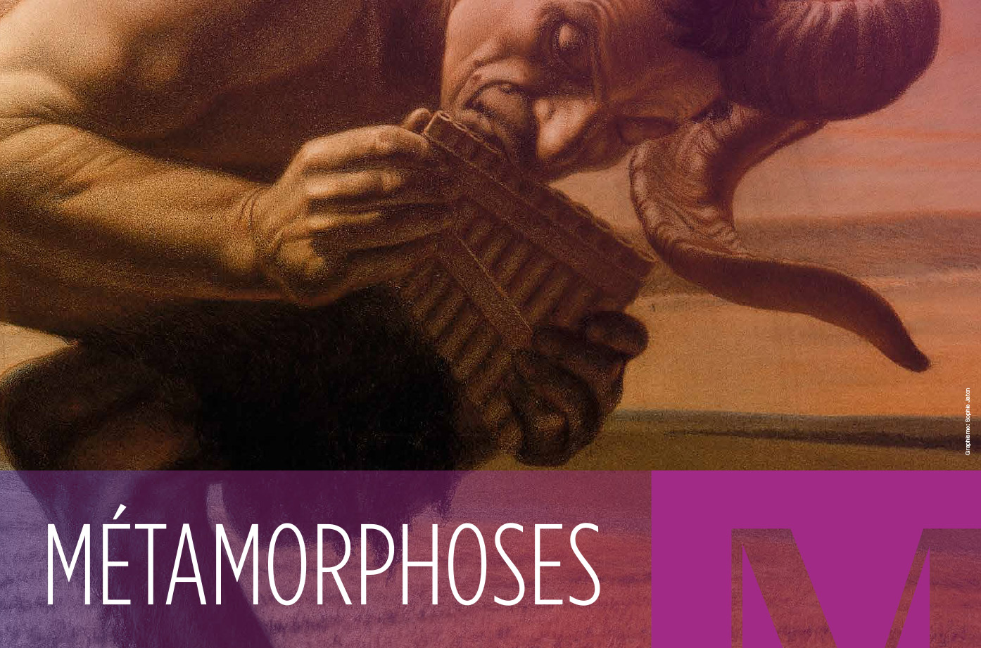 Musee-Art-Histoire-Exposition-Metamorphoses-Affichage-SGA-Sophie-Jaton
